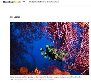 st lucia diver explores sea fans