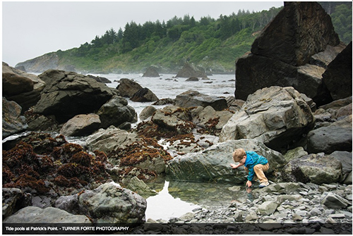 Humboldt insiders visitors guide photo of Jordan in tidal pools.